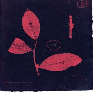 Red-pink plant cyanotype print on pinkish-red paper.